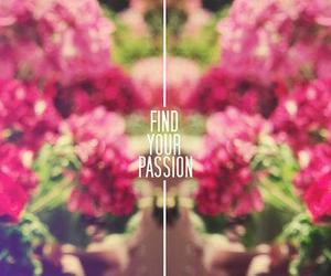 find, frase, and pasión image