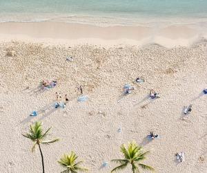 beach, summer, and hawaii image