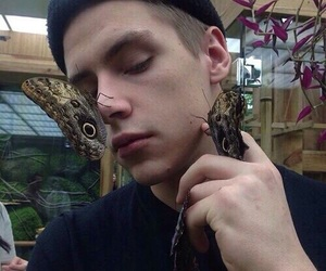 boy, butterfly, and grunge image