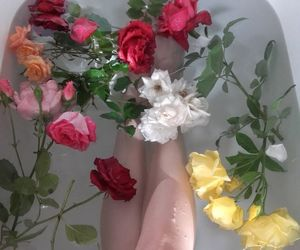 flowers, aesthetic, and bath image