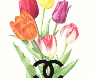 brand, Logo, and tulips image