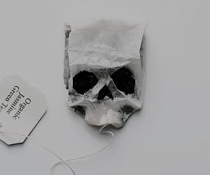 skull and tea image