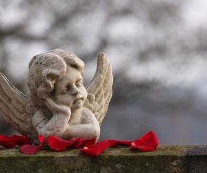 angel, grey sky, and rose petals image