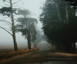 fog, road, and travel image