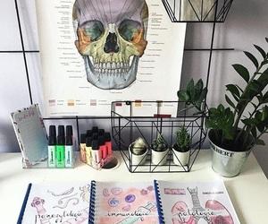 medicine and study image
