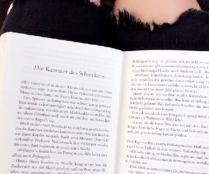 book, chamber of secrets, and summer image