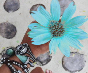 blue, summer, and flowers image