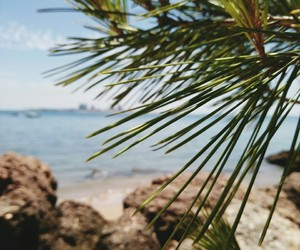 beauty, landscape, and summer vibes image