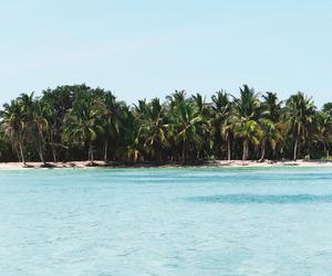 beach, nice, and ocean image