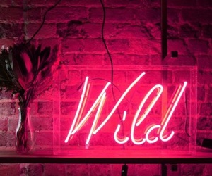 neon, wild, and pink image