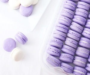 purple, lavender, and pastel image