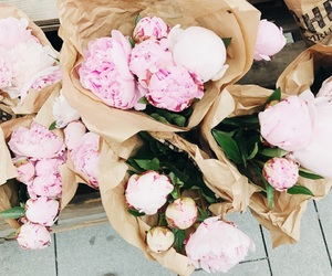 flowers, pink, and isabelmarant image