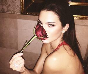 kardashians and kendall jenner image