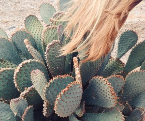 cactus, green, and hair image