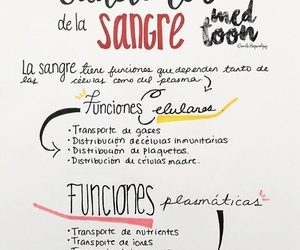 anatomia, dreams, and sangre image