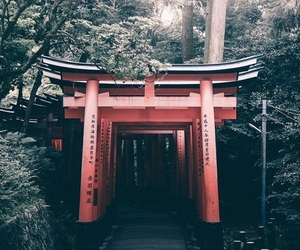 aesthetic, black, and japan image