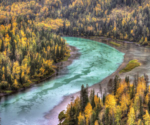 fall, nature, and river image
