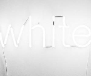 bright, minimalist, and neon image