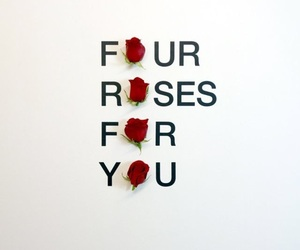 rose, quotes, and flowers image