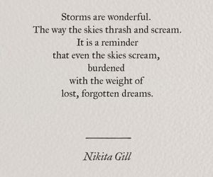 dreams, quotes, and storms image