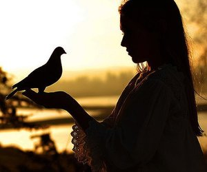 girl, bird, and photography image
