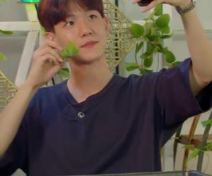 exo, kawai, and kpop image