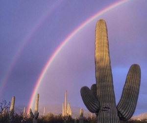 indie, rainbow, and alternative image