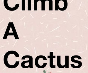 cactus, funny, and sarcasm image