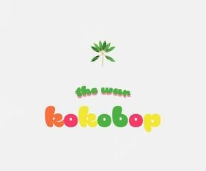 exo, kpop, and kokobop image