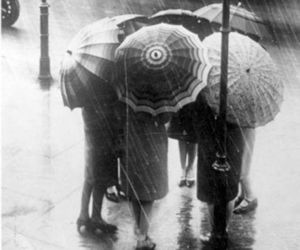rain, umbrella, and black and white image