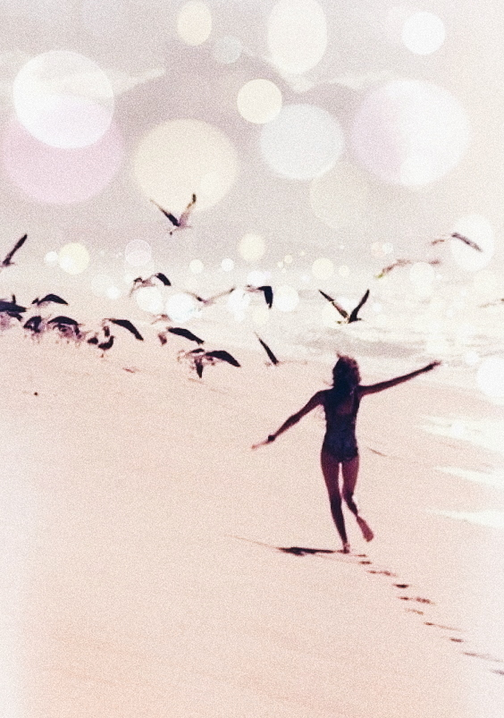 birds, fly away, and summer image