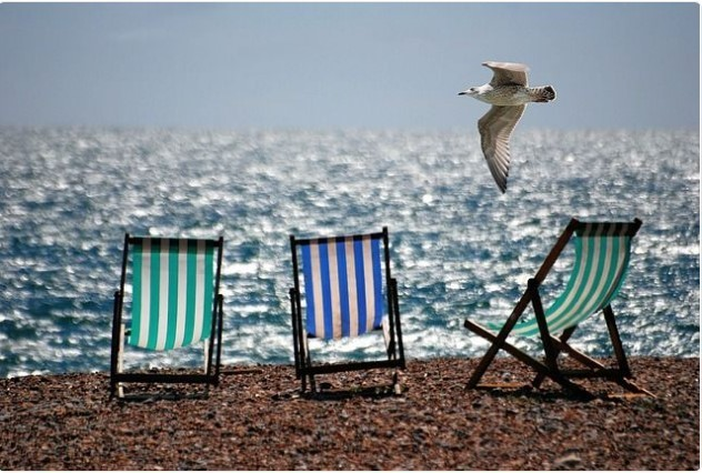 gull, sea side, and lawn chairs image