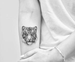 blackandwhite, lion, and tatto image