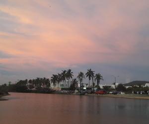 lake, palms, and pink image
