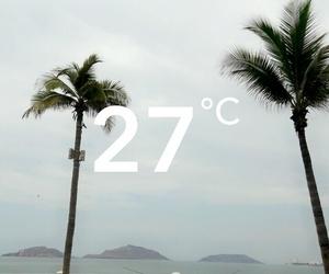 palms, mazatlan, and 3 islas image