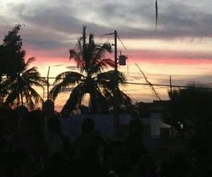 palms, sunset, and mazatlan image