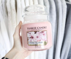 cherry blossom, pink, and yankee candle image