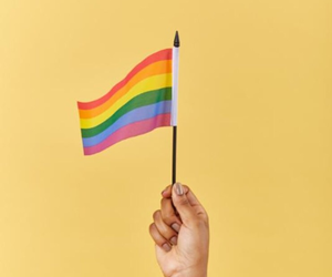 aesthetic, pride, and lgtb image