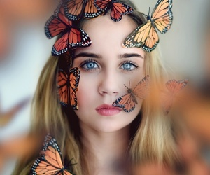 beautiful, blue, and butterfly image