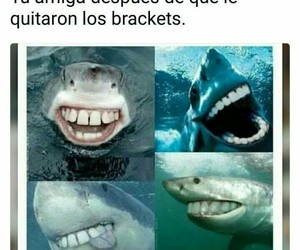 frases, phrases, and brackets image