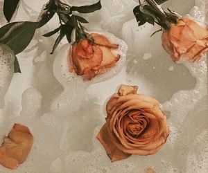 aesthetic, bathtub, and flower image