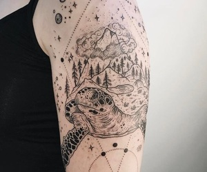 animal, forest, and stars image