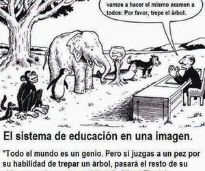 Albert Einstein and sistema de educación image