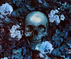 art and skull image