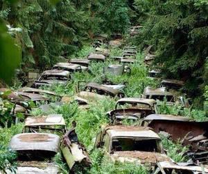car, abandoned, and green image