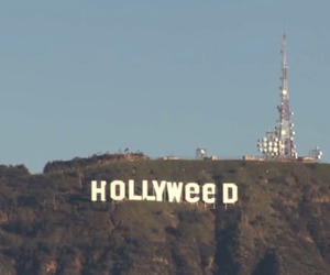 hollywood, hollyweed, and funny image
