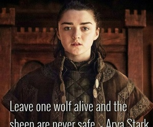 winter is coming, the north remembers, and princess arya stark image