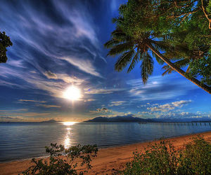 beach, sun, and nature image