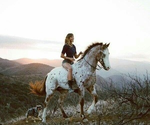 horse and riding image