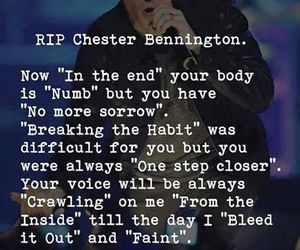 amazing, Lyrics, and rip image